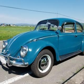 旧車 ビンテージ 札幌 札5 シングルナンバー フルナン 空冷VW ビートル カブトムシ - 旭川市