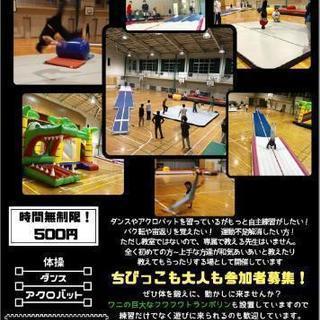 床体操メインの自主練習場!
