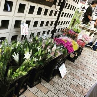 ★毎週木曜日限定★お花屋さんが店頭で格安お花販売!!