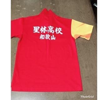 和歌山星林高校 ポロシャツ Mサイズ