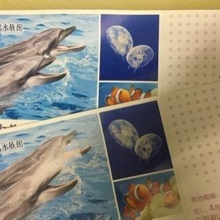 新江ノ島水族館招待券