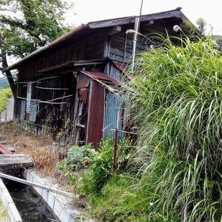 一軒家丸ごと解体更地、スチール物置解体処分、樹木伐採処分は当社ま...