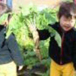 【6/17(日)イベント】シェア畑 西国立にて収穫体験会を開催!!