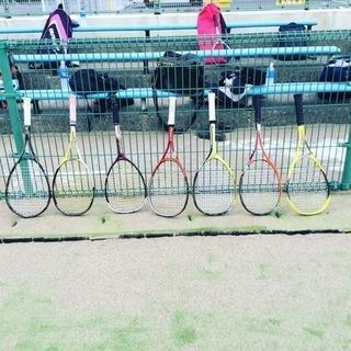 軟式庭球(ソフトテニス)
