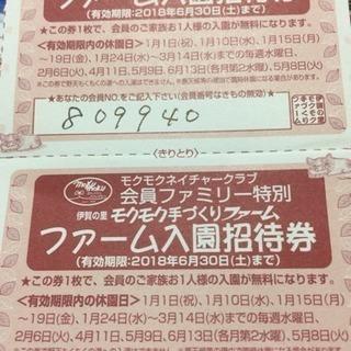三重県伊賀もくもくファーム入園招待券