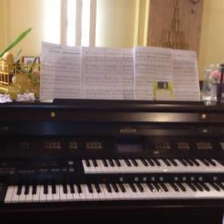 初心者の為のピアノ、電子オルガン教室