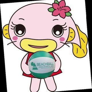埼玉県吉川市のビーチボールバレーチーム Catfish