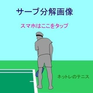 市民テニスサークルで会員募集