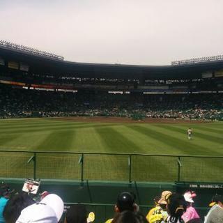 阪神タイガース観戦仲間募集しています
