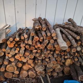 カラ松、他雑木の枝等の薪材 薪ストーブなどにいかがでしょうか?