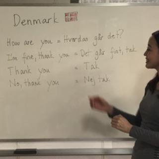 デンマーク語講座 ネイティブ講師 予約制 − 大阪府