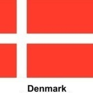 デンマーク語講座 ネイティブ講師 予約制 - その他語学