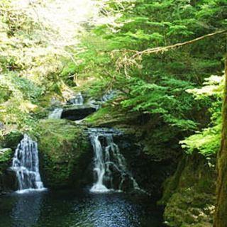 【7月22日】ゆる募!!ハイク AKM48滝でまったりヒーリング...