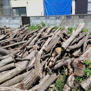 ナラノ木原木・薪にどうでしょうか