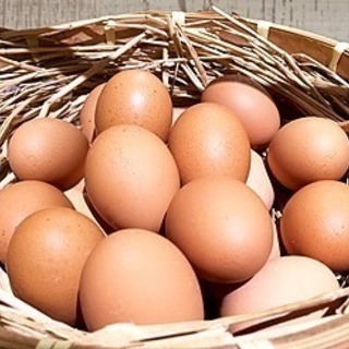 絶品 安心安全エサと水にこだわりの平飼いのオーガニック卵 …