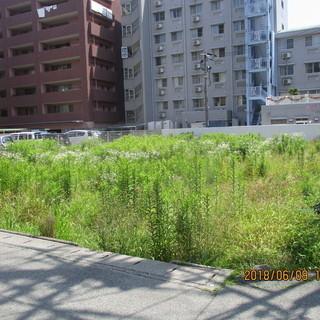 福岡、田んぼ、畑、空き地、草刈、格安、歩行式ハンマーナイフモア