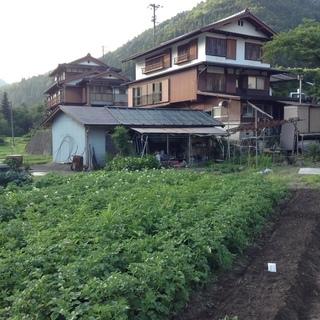 下呂の山奥で野菜などを作りながらのんびり生活してみたい方