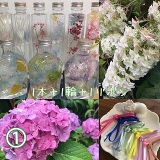 ①ハーバリウム(植物標本)+リボン+生花(紫陽花)