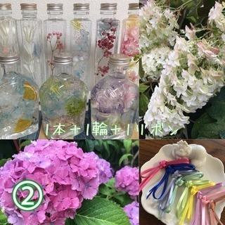 ② ハーバリウム(植物標本)+リボン+生花(紫陽花)