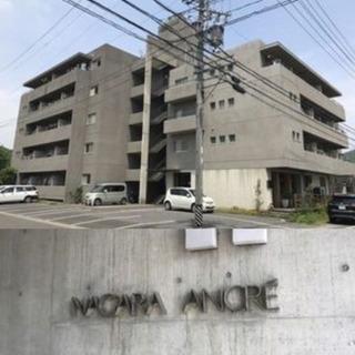 長良川温泉街⭐︎保証人不要、ルームシェア可能の画像