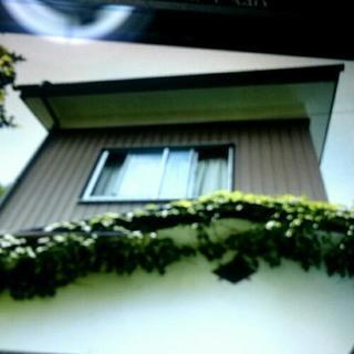 戸建ての貸家(水の森)