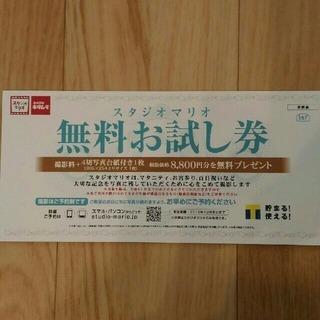 スタジオマリオ  撮影料+四切写真 無料プレゼント券 8800円相当