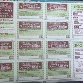 伊賀の里モクモク手づくりファームの入園チケット 複数枚有
