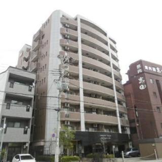 人気の♡セレッソコートが敷金・礼金0円ででました☺ - 不動産