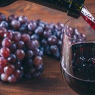 10/8(月/祝)19:00~30名規模 独身限定ワイン会 《六本...
