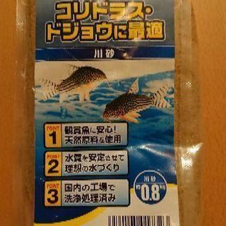 未開封 川砂 0,8キロ めだか 金魚 砂 アクアリウム ドジョウ