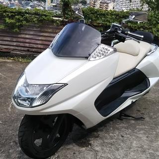 ☆☆ヤマハマグザム250 SG17J 白 センスの良い白 外装新品