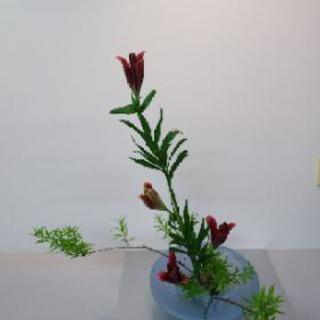 華道二葉流(緑遊会)生け花、アレンジメント教室