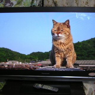 ◇パナソニック 32V型テレビ TH-L32G1 デジタルハイビジ...