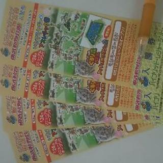 東武動物公園入園券4枚