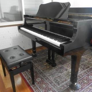虹の音ピアノ・リトミック教室