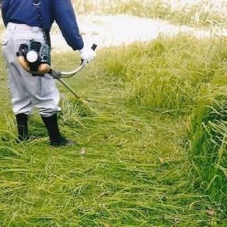 土木、草刈り 見積もり無料‼️‼️