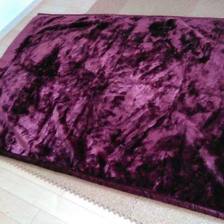 【引き渡し日時6月29日限定】毛布を格安で購入下さい。