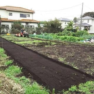 大きめな区画の畑をお貸しします♪ (貸し畑/貸し農園/レンタル畑/...