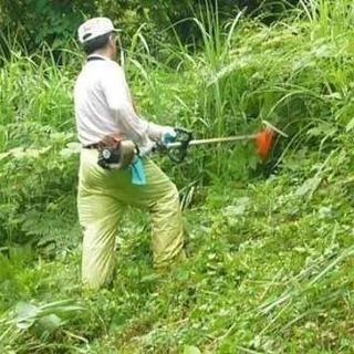 ご自宅などの草刈り見積り無料!