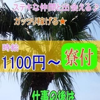 【高時給1100円~】淡路島夏休み短期リゾートバイト!寮付き・住み...
