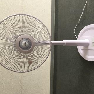 扇風機 美品