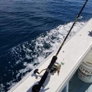 沖釣り一緒にいってくれる方募集