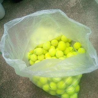 使用済み中古テニスボール1