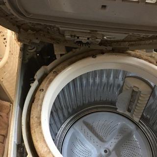 洗濯機完全分解クリーニング専門店!
