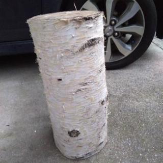 シラバカの木