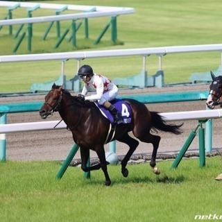 【初心者歓迎】競馬のグルチャ参加しませんか!【7/8〜予想大会開催!】