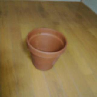 植木鉢 21 テラコッタ鉢 観葉植物 植物 植木鉢 プランター