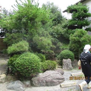福岡、不要品、植木の徹去、格安