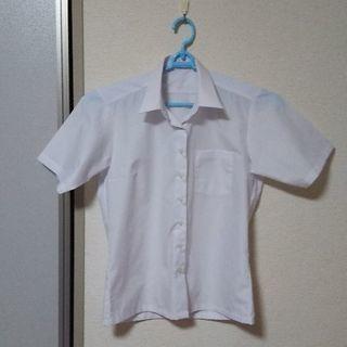 学生服  形態安定加工  半袖カッターシャツ