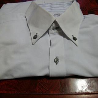 白紳士シャツ ボタングレー